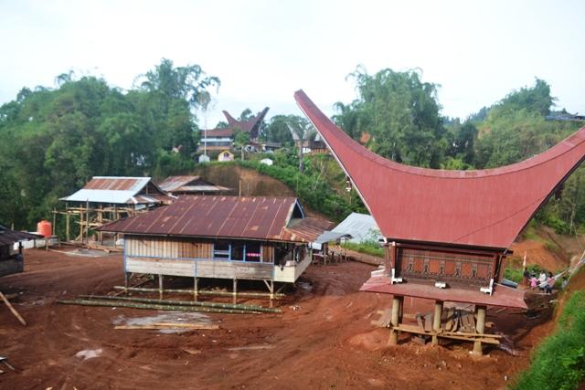 Lolai berbenah (foto: mfaridwm)