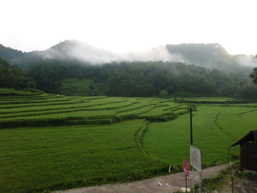 Lahan pertanian dan tiga puncak gunung di Bulu Tellue. (foto: mfaridwm)