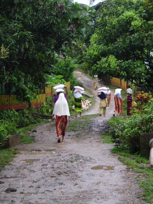 Suasana pagi di Desa Tondongkura. (foto : mfaridwm)