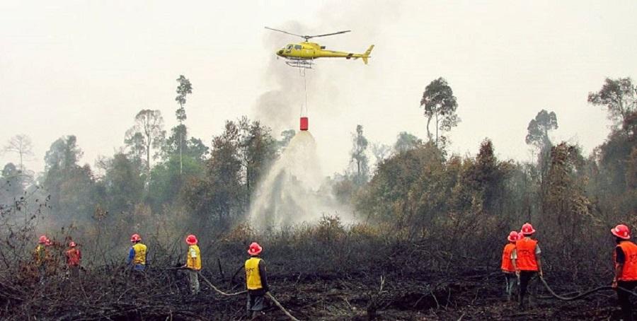 Kebakaran Hutan dan Lahan Tahun 2015 silam di Palangkaraya (foto: blog_act)