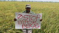 Stop Impor Beras (Foto: Jateng.Tribunnews)