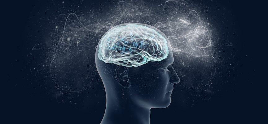 Benarkah Volumen Otak bisa mengecil. (ilustrasi: shutterstock/doktersehat)