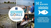 Sustainable Developments Goals (SDGs)