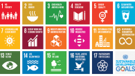 Sustainable Development Goals. (SDGs)