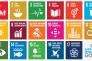 Sustainable Development Goals. (SDGs)