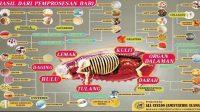 Berbagai produk olahan makanan dan kebutuhan rumah tangga yang bersumber dari unsur-unsur babi. (foto: ist/palontaraq)